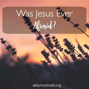 Was Jesus Ever Afraid?